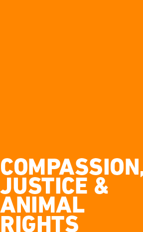 Compassion, Justice & Animal Rights